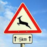 Komolyan kell venni az út szélén elhelyezett vadveszélyt jelző táblát?!