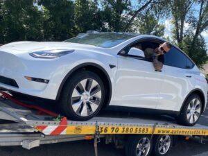 Tesla-szallitas